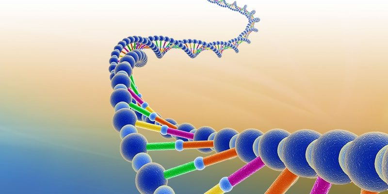 Changer son ADN, c'est chose possible !