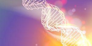 Physique et biophysique quantique selon Bruce Lipton