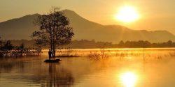 Vivre en pleine conscience : Calmer le mental pour mieux fonctionner
