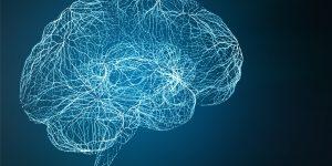 La matière grise et ses complexités – Article du Dr Joe Dispenza