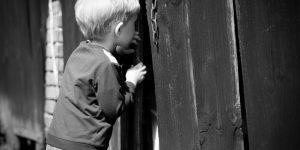 La pleine conscience et la curiosité