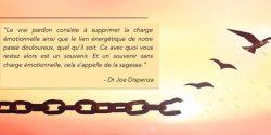 Pardonner le passé pour créer l'avenir – Dr Joe Dispenza