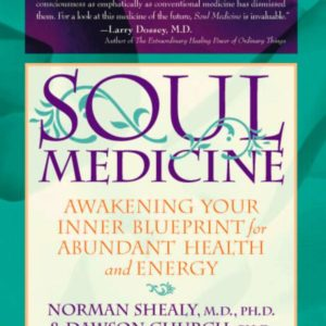 Soul Medicine: Awakening Your Inner Blueprint for Abundant Health and Energy
