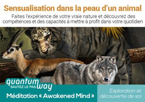 Awakened Mind_Sensualisation animal_banniere produit