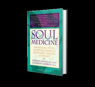 Soul Medicine Awakening Your Inner Blueprint for Abundant Health and Energy